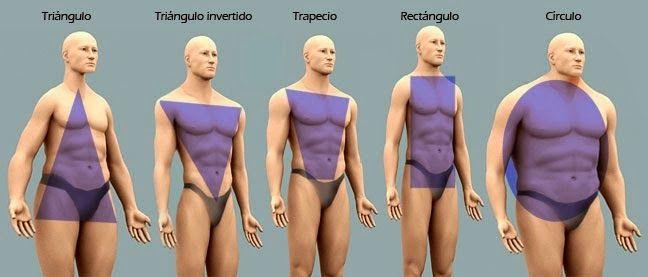 tipo de cuerpo hombre