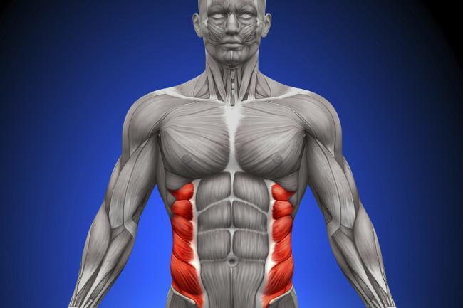 Rutina abdomen para oblicuos